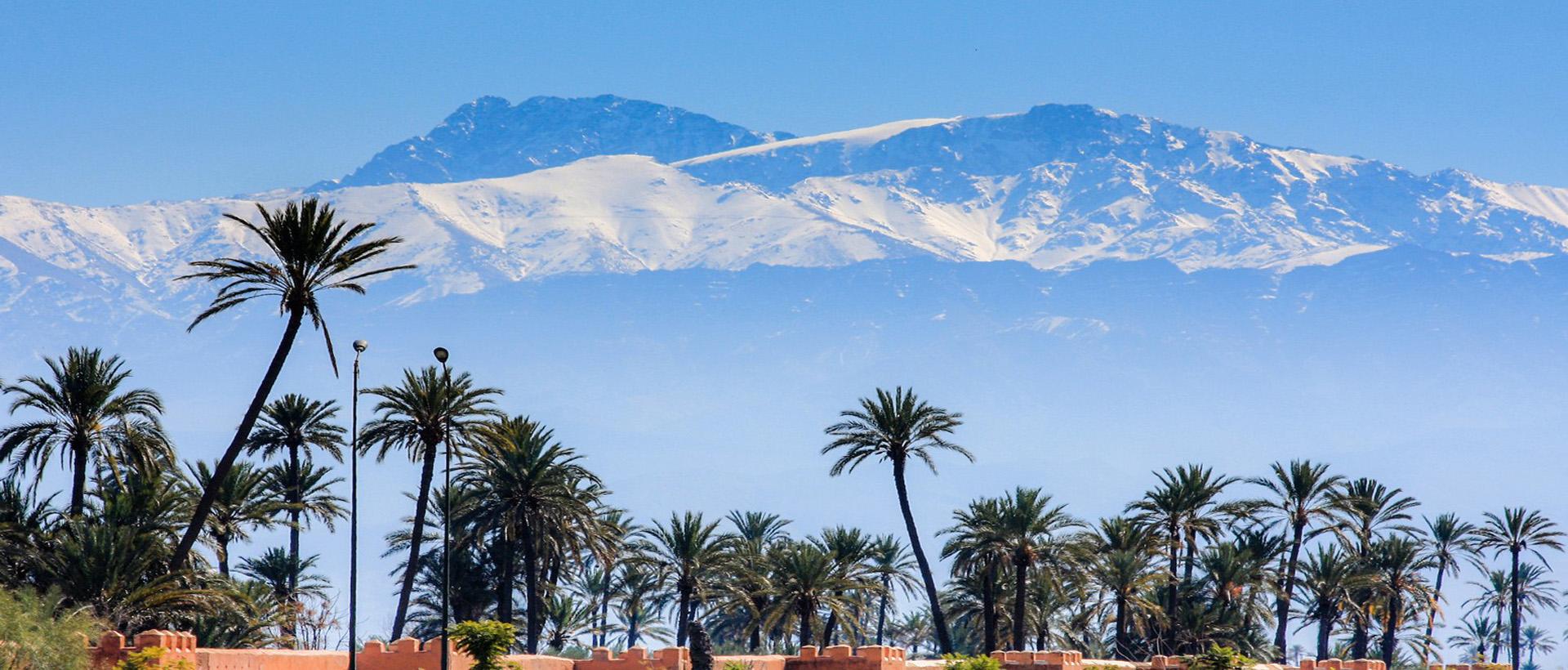 CFPA 2017 – Marrakech